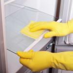 Очищение холодильника от плесени