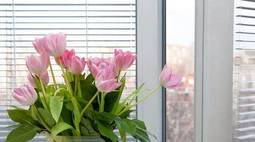 Чистое белоснежное пластиковое окно