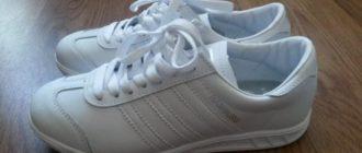 Пара чистых белоснежных кроссовок