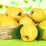 Спелые плоды айвы